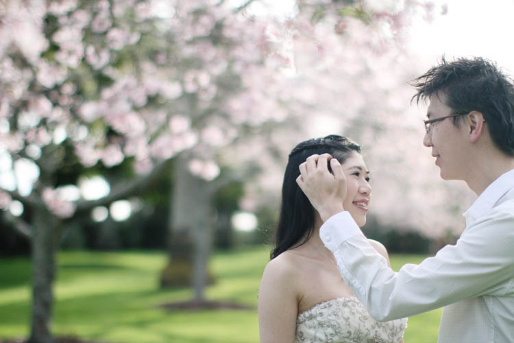 nz_wedding_engagement_cornwall_park-15