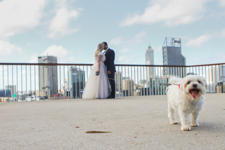 Auckland_Wedding_Photographer_Perth-123