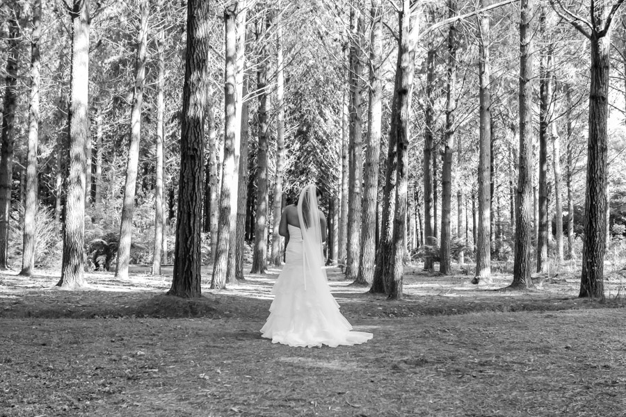 auckland_wedding_photographer_hunua-148
